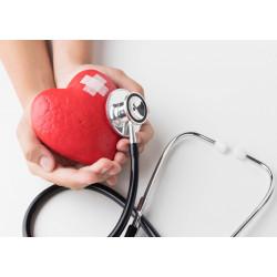 Cardiovascular Examination (OSCE)